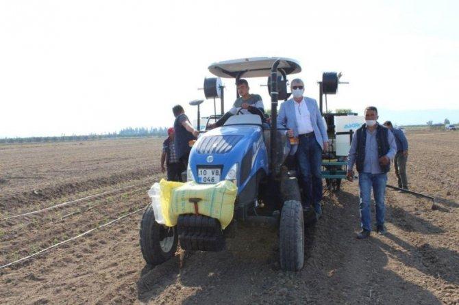 Belediyeler tarıma el attı, 25 yıldır ekim yapılmayan araziler tarıma kazandırıyor