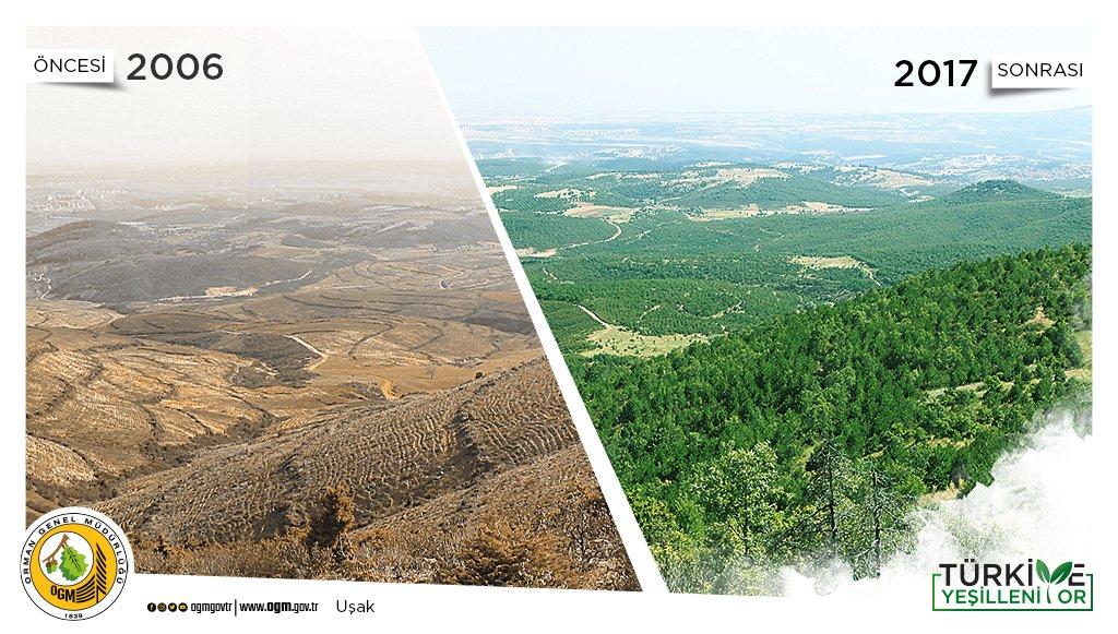 Orman 'şeflikleri' bölge sahalarındaki doğayı güzelleştiriyor