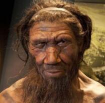 Neandertal beyninin insan beyninden daha hızlı olgunlaştı anlaşıldı