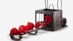 Geleceğin ev hobileri arasında 3D Yazıcılar yer alacak!..