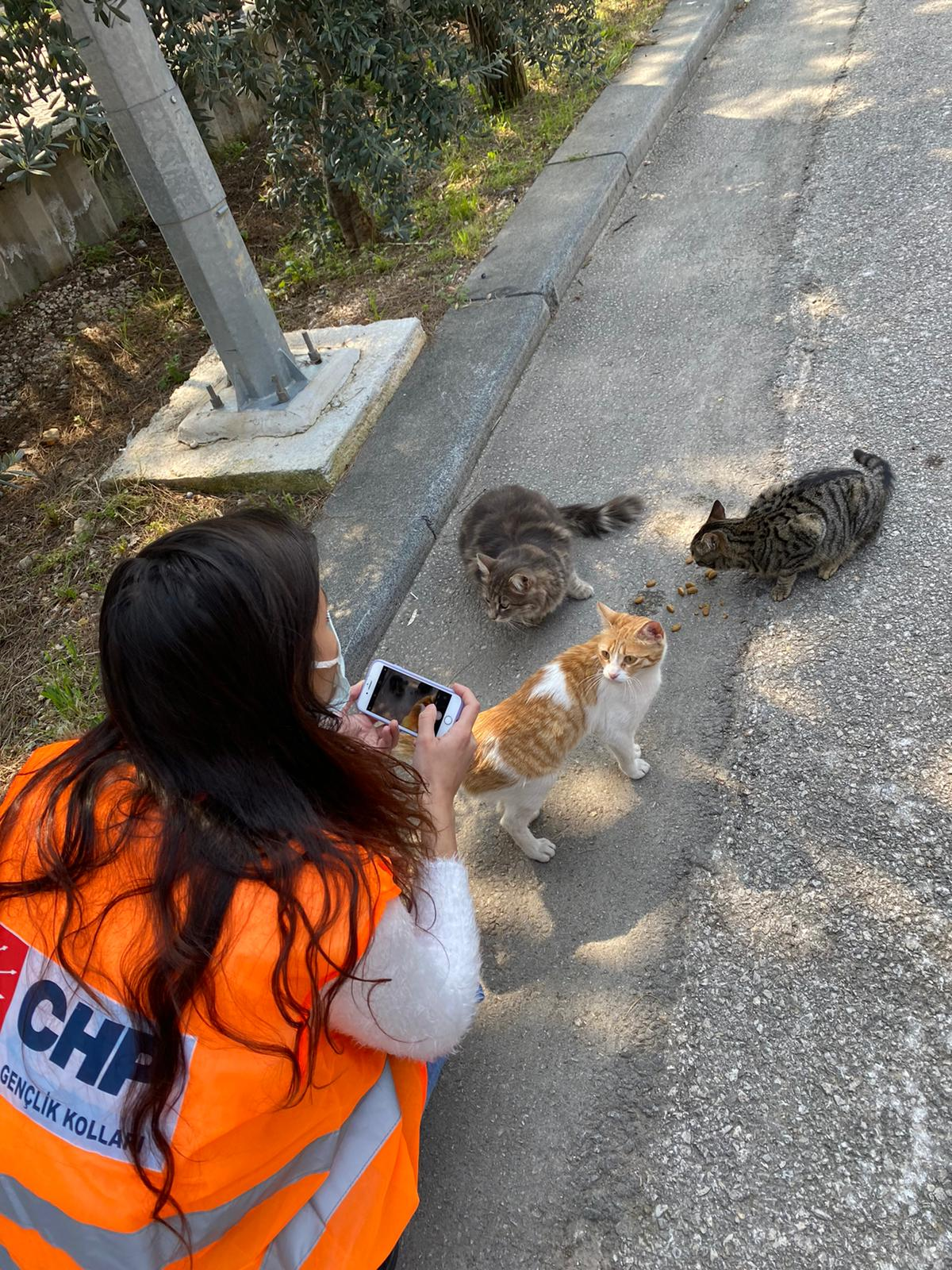 CHP'li gençler sokak hayvanlarını unutmadı