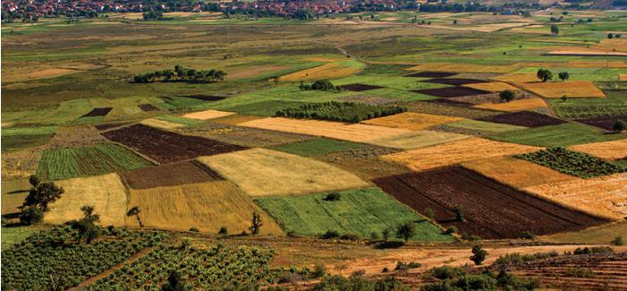 Tarımsal girdi fiyat endeksi (Tarım-GFE) yıllık %19,60, aylık %1,40 arttı