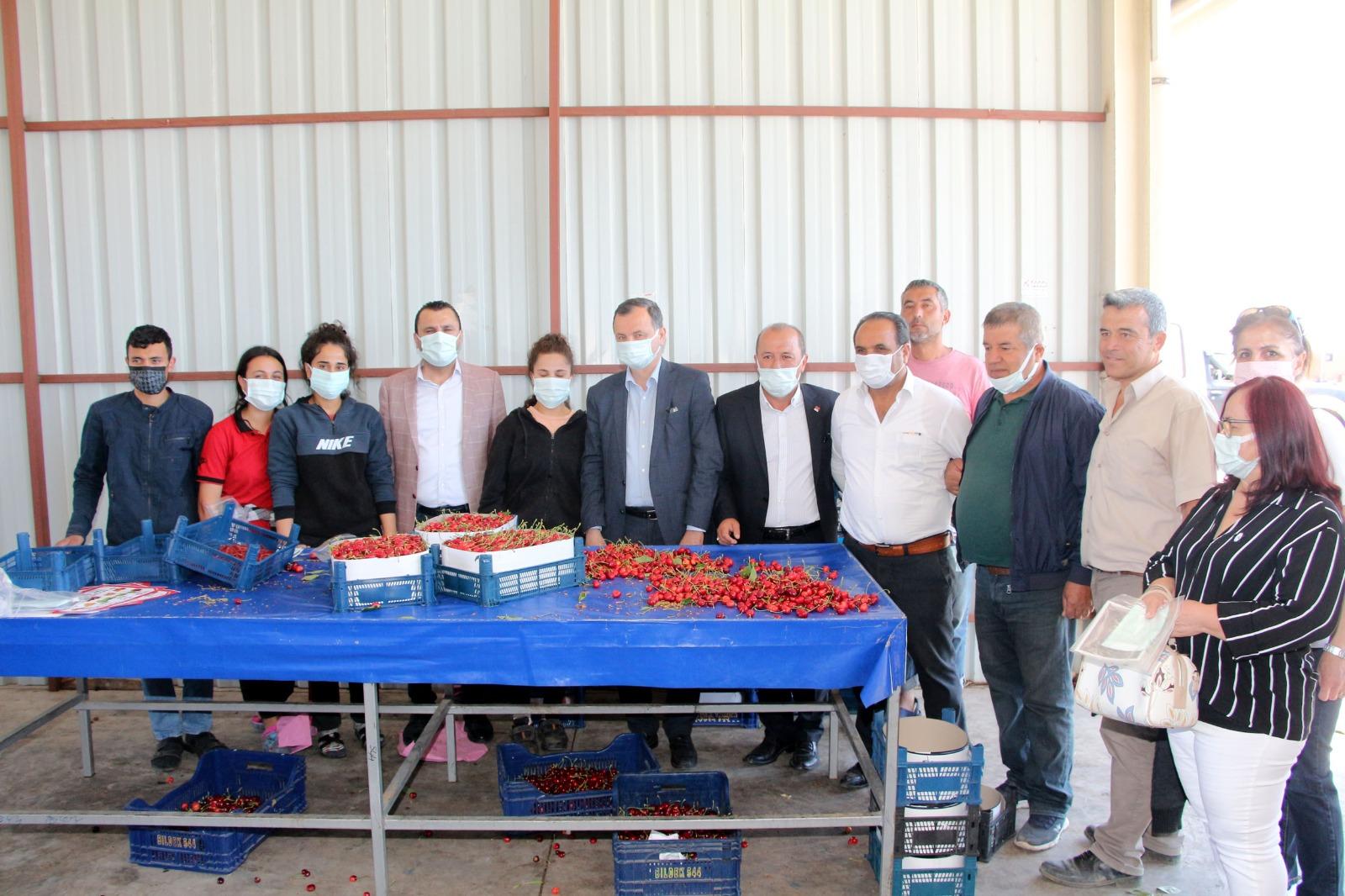 CHP, Sancaklıbozköy'de Kiraz Üreticisinin Sıkıntılarını Dinledi