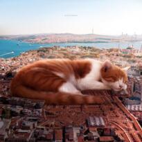 Fantastik bir dünya: Hayallerde İstanbul