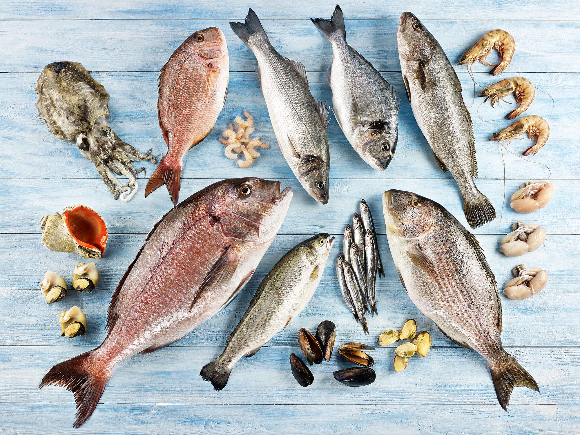 Türkiye 152 ülkeye su ürünleri ve hayvansal mamulleri ihraç ediyor