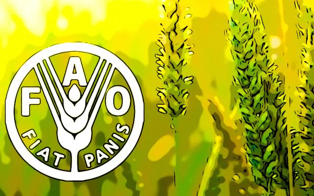FAO Gıda Fiyatları ağustos'ta yıllık %32,9 artış gösterdi
